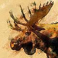 Moose by Bob Galka