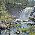 Moose Falls by Paul Krapf