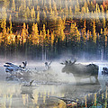Moose Lake by Leland D Howard