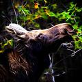 Moose by Steve McKinzie