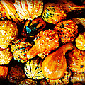 More Beautiful Gourds - Heralds Of Fall by Miriam Danar