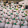More Snowmen by Garry Gay