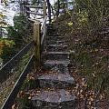 More Stairs by Steve Samples