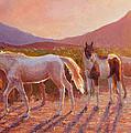 More Than Light Arizona Sunset And Wild Horses by Karen Whitworth