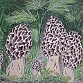 Morel Mushrooms by Kathy Marrs Chandler