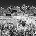 Mormon Barn by Claudia Kuhn