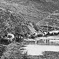 Mormon Emigrant Conestoga Caravan 1879 - To Utah by Daniel Hagerman