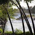 Morning At Idaho Falls by John Daly