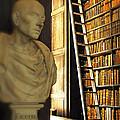 Dublin - Morning At The Library by Barbara Budzinski