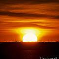 Morning Blaze by Joe Geraci