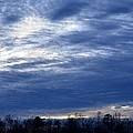 Morning Blue by Maria Urso
