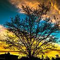 Morning Colors by Kishore Mathrani