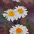 Morning Daisies by Wendy Provins
