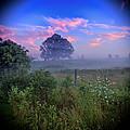 Morning Dream by Alan Raasch