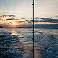 Morning Fishing by John Telfer