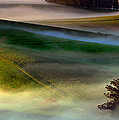 Morning Fog Over Two Rock Valley Diptych by Wernher Krutein
