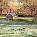 Morning Frost by Skip Willits