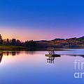 Morning Glory.. by Nina Stavlund