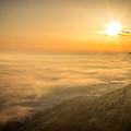 Morning Glory by Travis Volkman