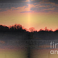 Morning Glow On A Frosty Day by Four Hands Art