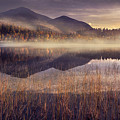 Morning in Adirondacks by Magda  Bognar