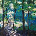 Morning Sunshine In Park Forest by Arthur Witulski