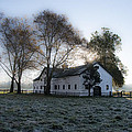 Morning In Whitemarsh - Widener Farms by Bill Cannon