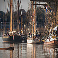 Morning Light - Chestertown Downrigging Weekend by Lauren Brice