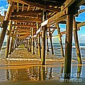 Morning Light During Low Tide by Traci Lehman