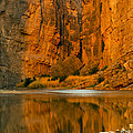 Morning Light In The Canyon by Bob Phillips