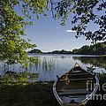 Morning Light On A Canoe by Gord Horne