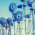 Morning Light On  The Blue Windmills by Iris Greenwell