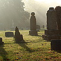 Morning Mist At The Cemetery by Lynn Sprowl