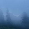 Morning Mist by Minartesia