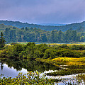 Morning Mist On The Moose River by David Patterson