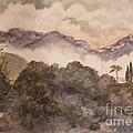 Morning Mist Pasadena by Nancy Kane Chapman