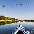 Morning On The Tranquil Lake by Gord Horne