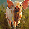 Morning Pig by Cari Humphry