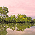 Morning Reflections by Barbara Dean