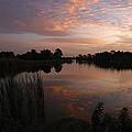 Morning Reflections by Patricia Twardzik