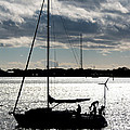 Morning Sail by Gaurav Singh
