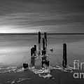 Morning Suds 16x9 Bw by Michael Ver Sprill