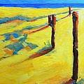 Morning Sun At The Beach by Patricia Awapara