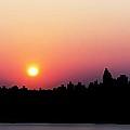 Morning Sun by Lilliana Mendez