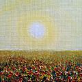 Morning Sunshine Three by Deb Wolf