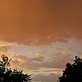 Morning Thunder by Susan Herber