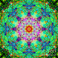 Moroccan Lace Mandala by Susan Bloom