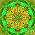 Morocco Mandala by Susan Bloom