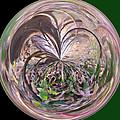 Morphed Art Globe 36 by Rhonda Barrett