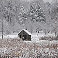 Morris Arboretum Mill In Winter by Bill Cannon